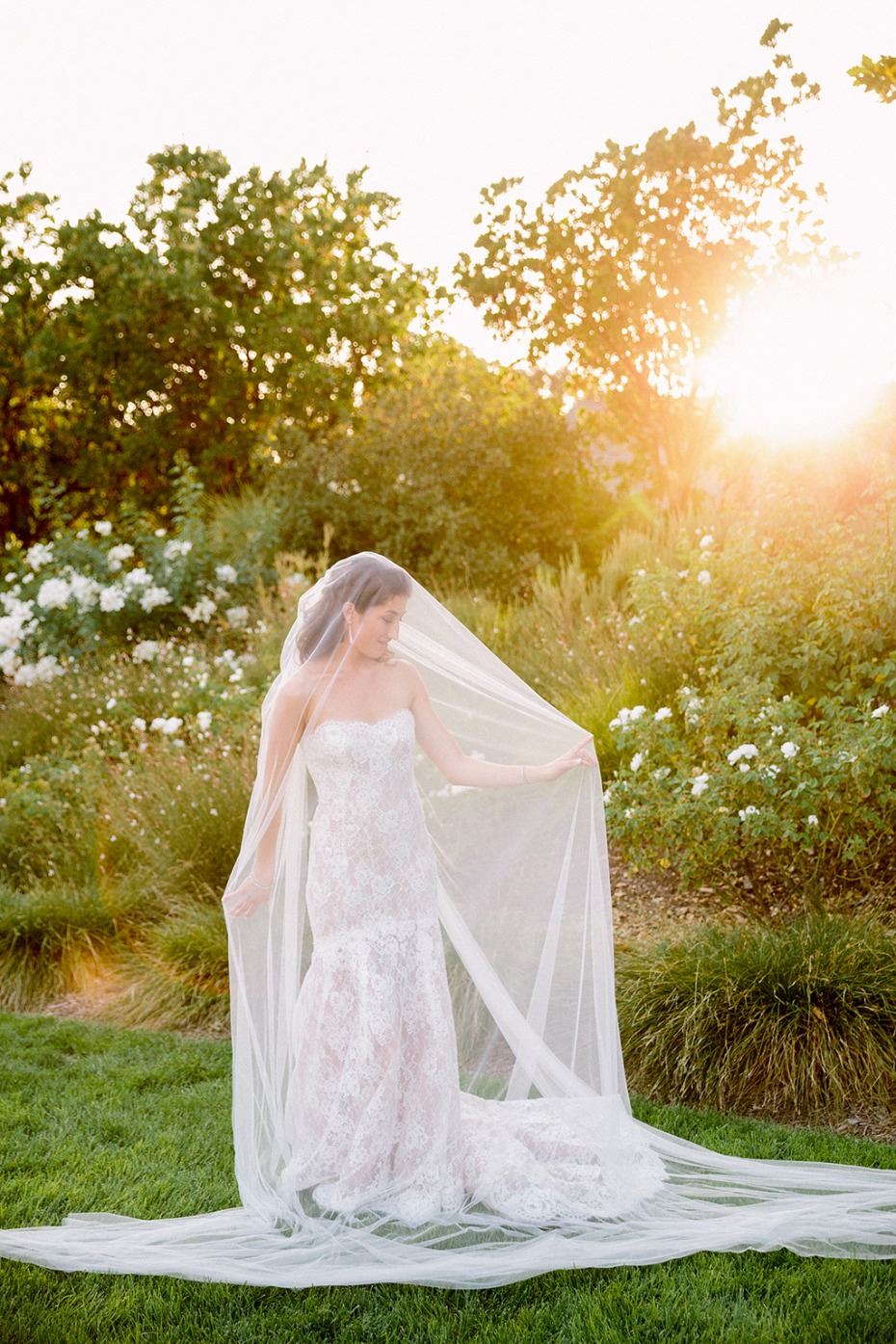bridal photo ideas with your wedding veil