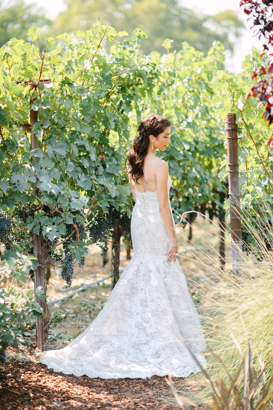 winery wedding photo ideas