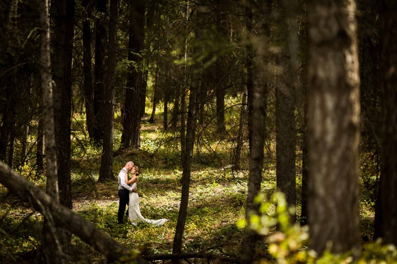 I love this beautiful forest/farm wedding. The light couldn't have been better.