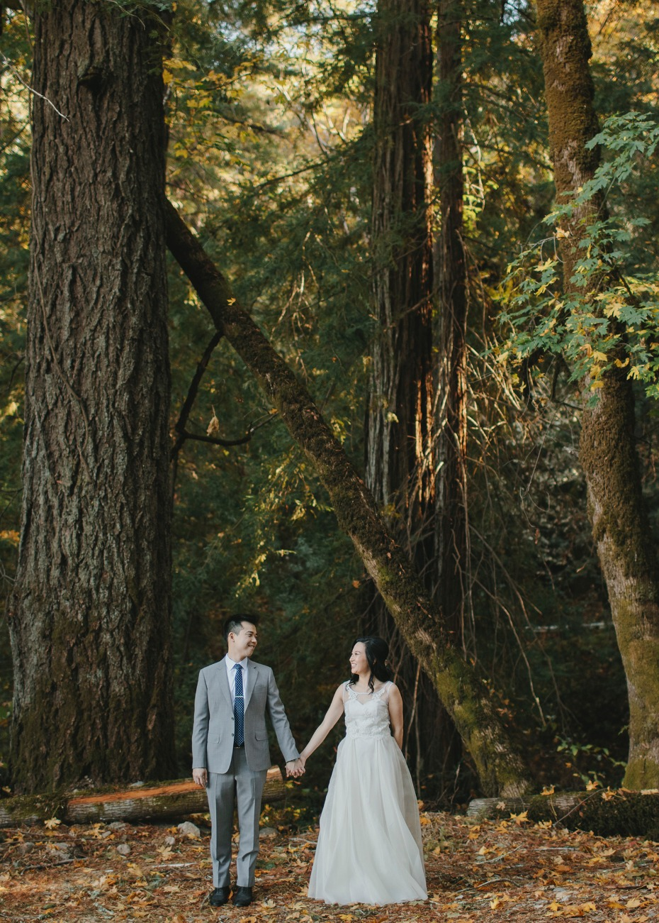 Take wedding pictures in the woods