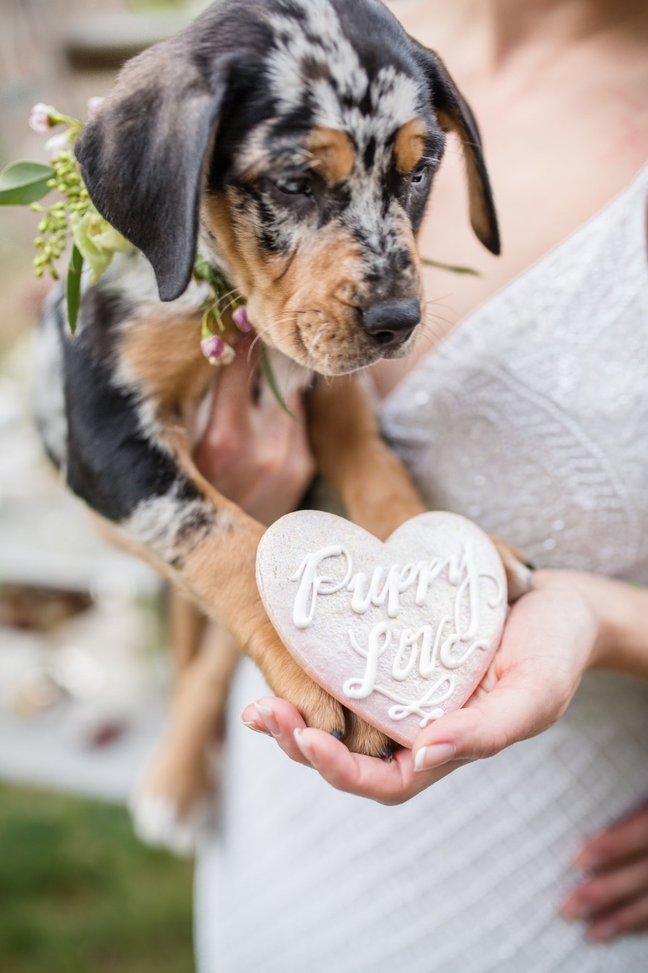 puppy love wedding ideas