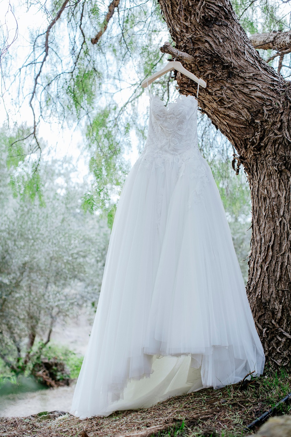 wedding dress from Kleinfelds