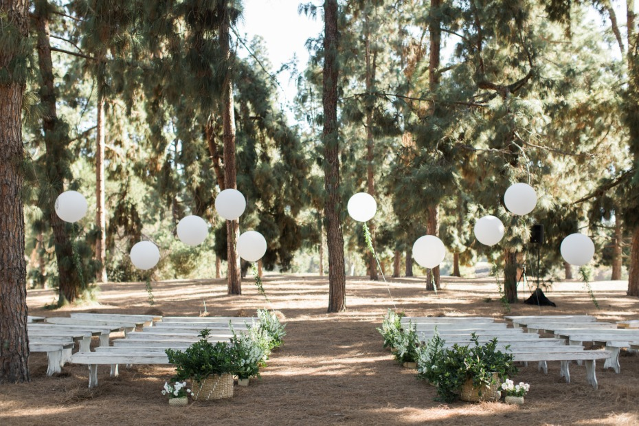 Pine forest ceremony in the heart of LA