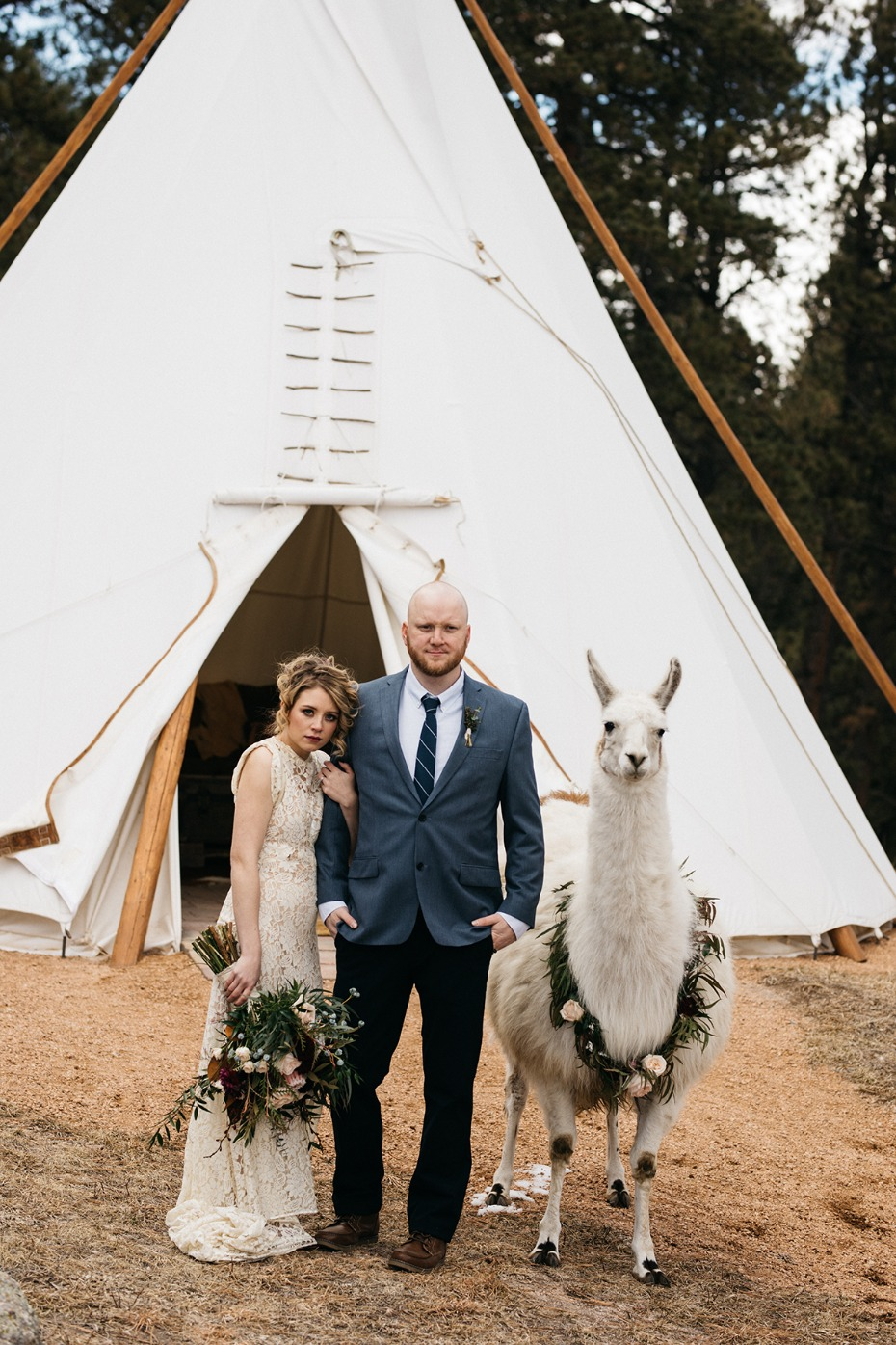 wedding teepee and wedding llama