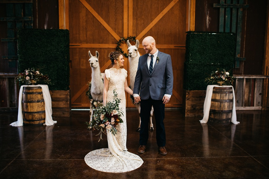 sweet bride and groom wedding day with llama witnesses