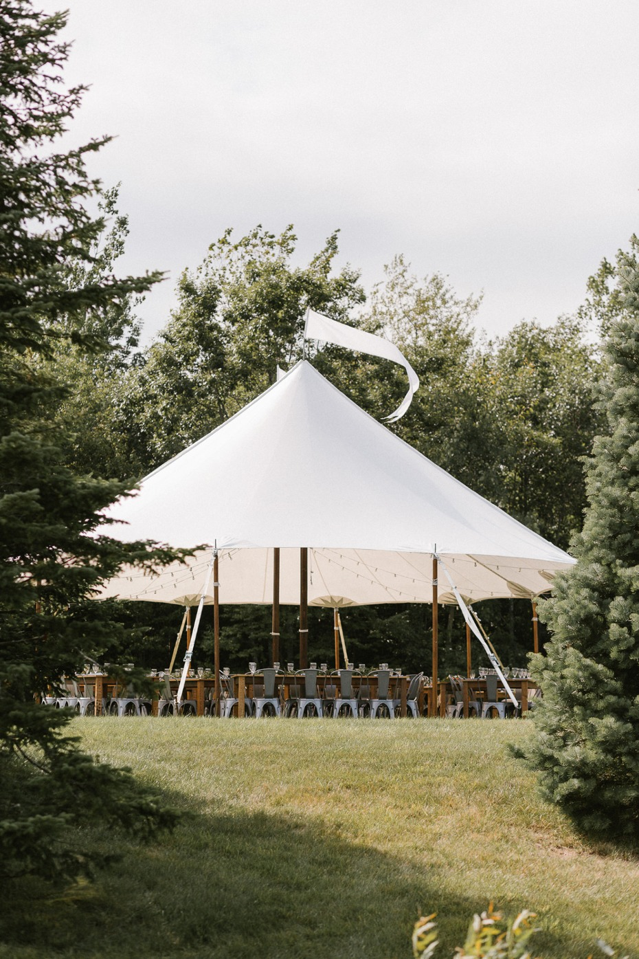 Cool circus tent reception