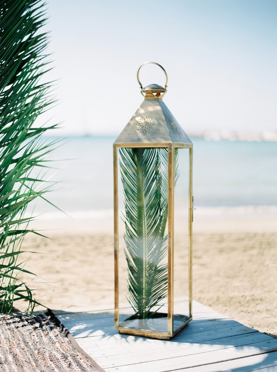 palm frond in a vintage lantern
