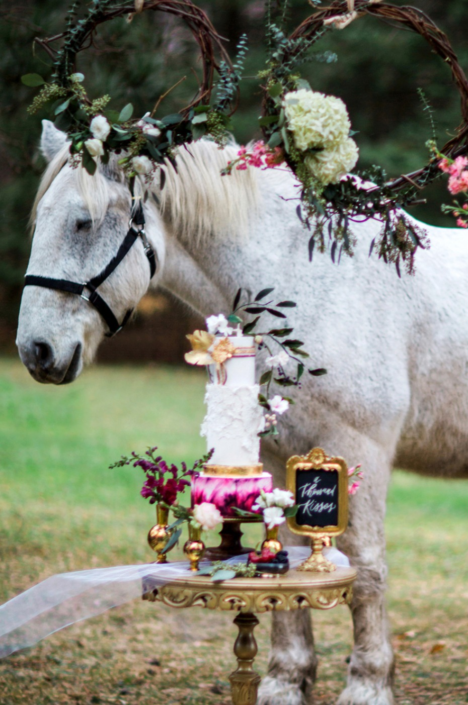 wedding horse and wedding cake