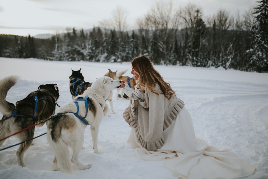 bride and huskies