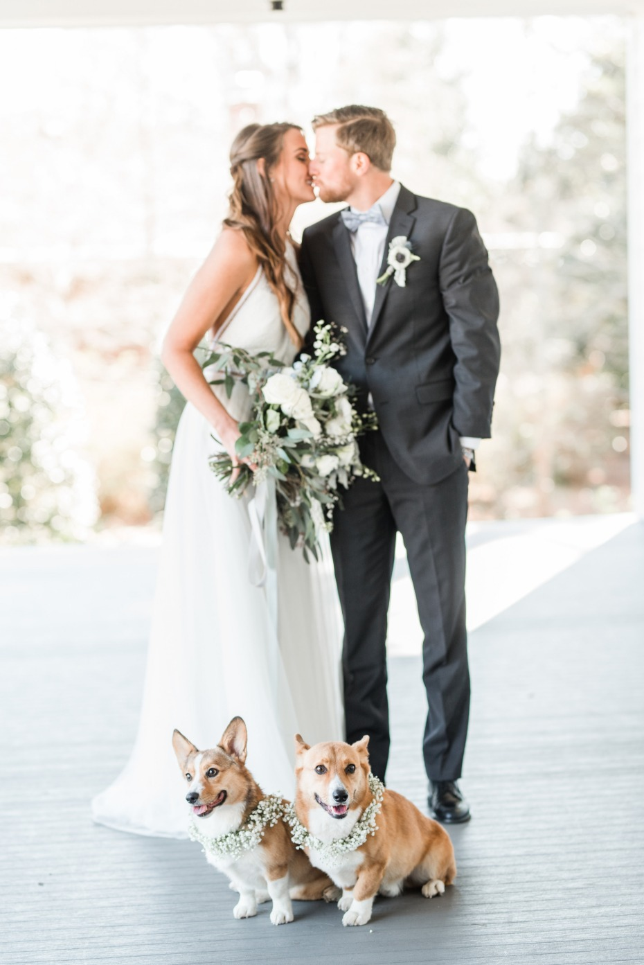 CUTE wedding corgis