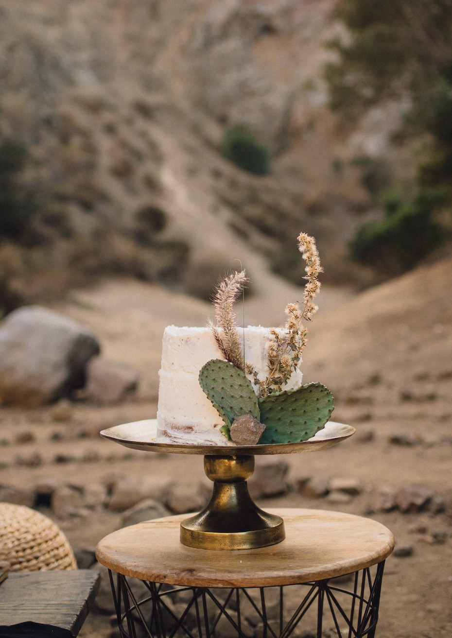 White wedding cake with cactus paddles