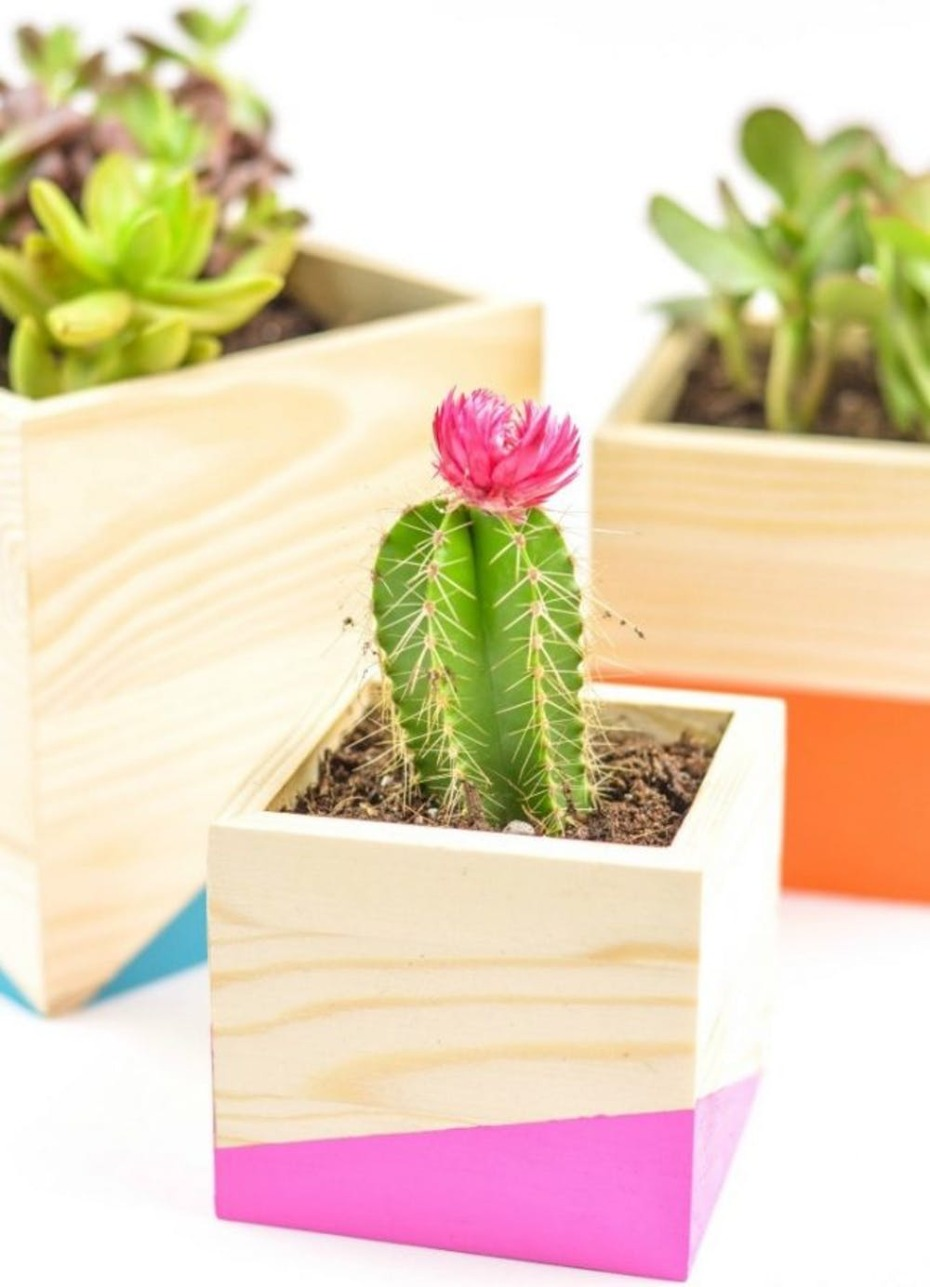 diy-color-block-wood-planter21-645x893