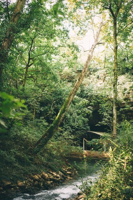 An Adventurous Woodsy Wedding at Lost River Cave