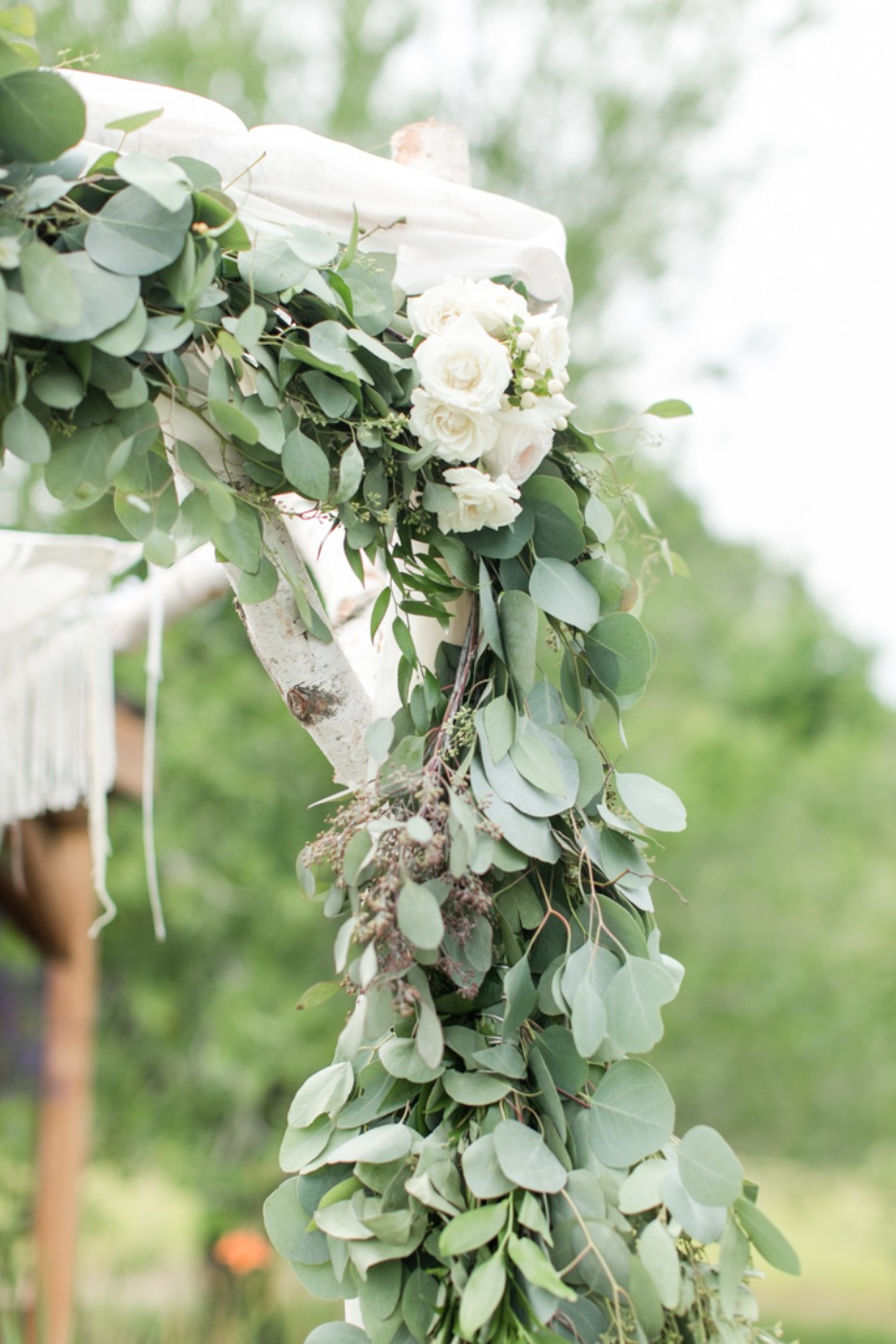 Eucalyptus and white flowers