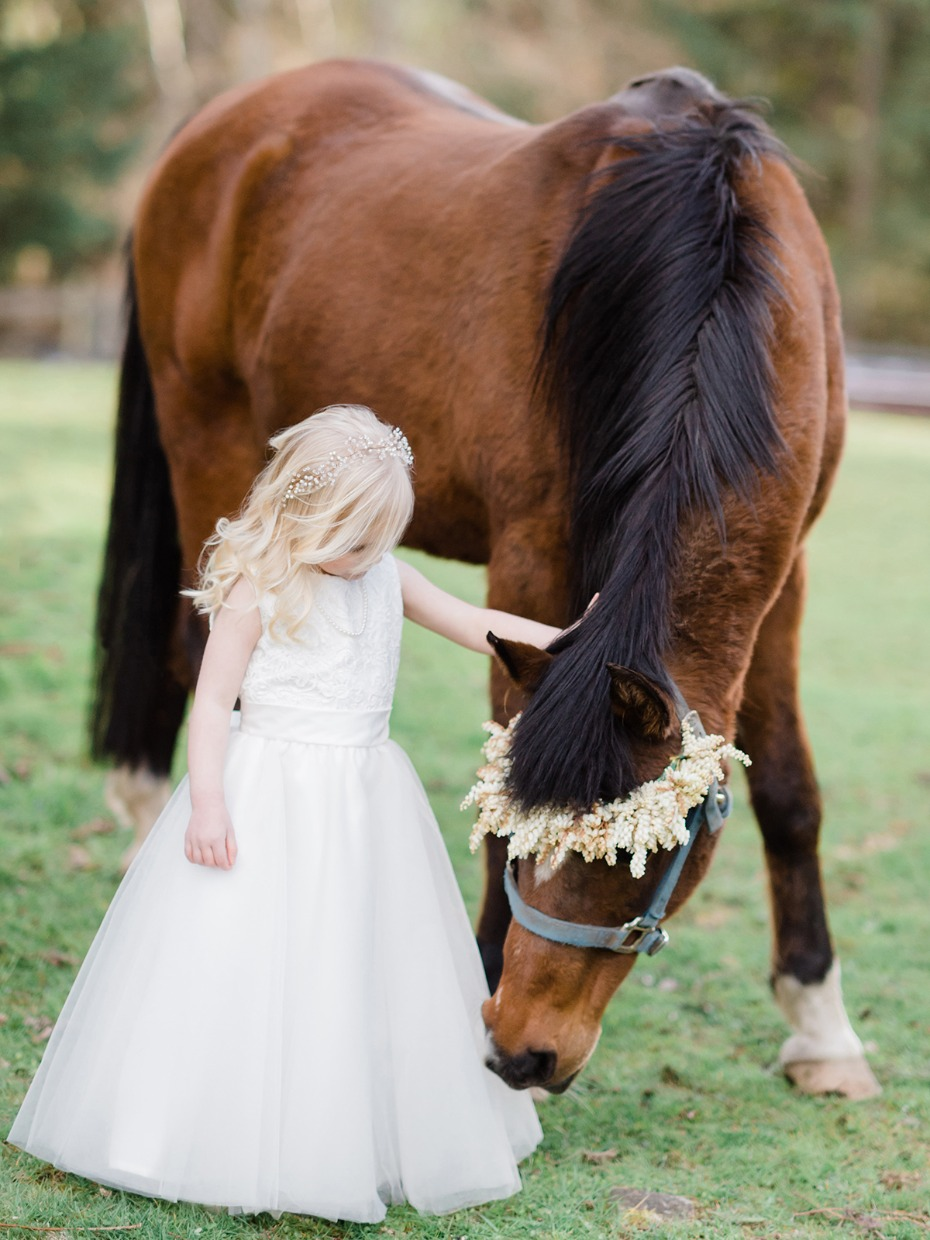 flower girl and wedding horse