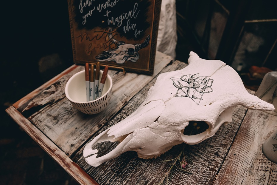 guestbook on cow skull