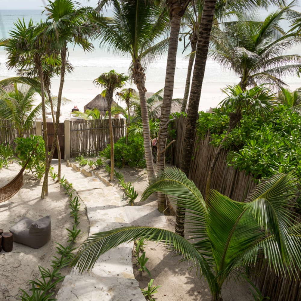 Profile Image from NEST Tulum