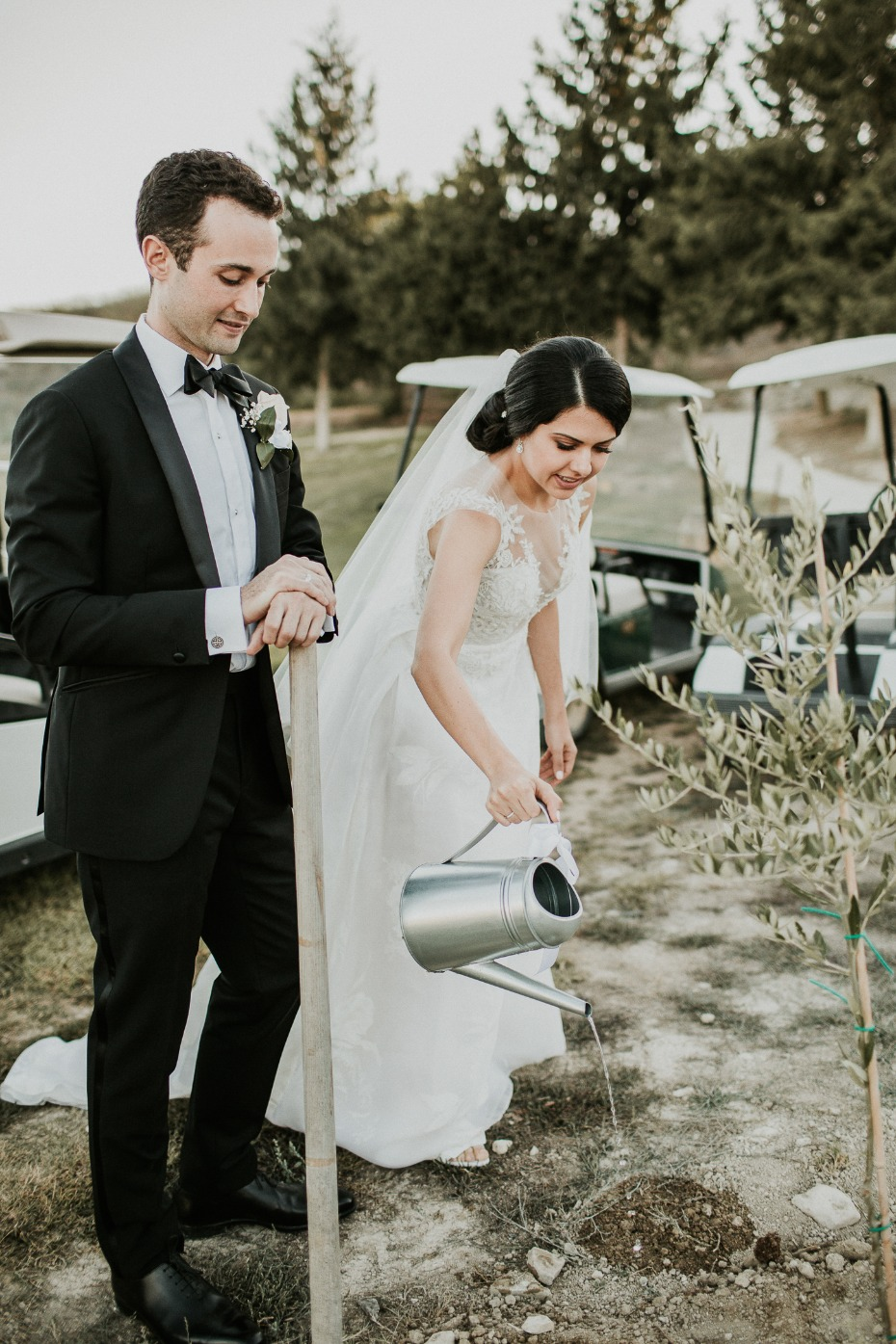 planting wedding tree