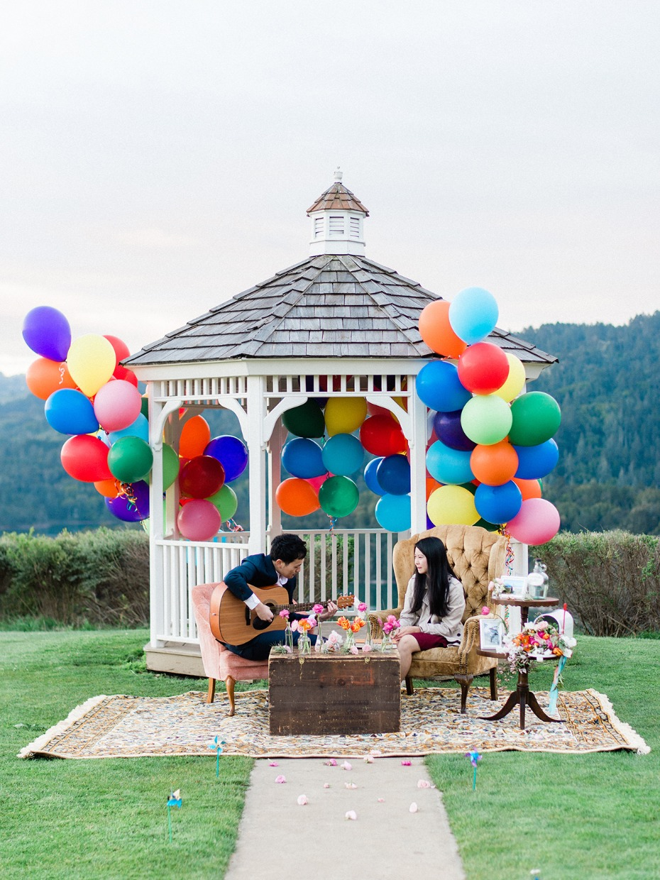 wedding proposal with an Up theme