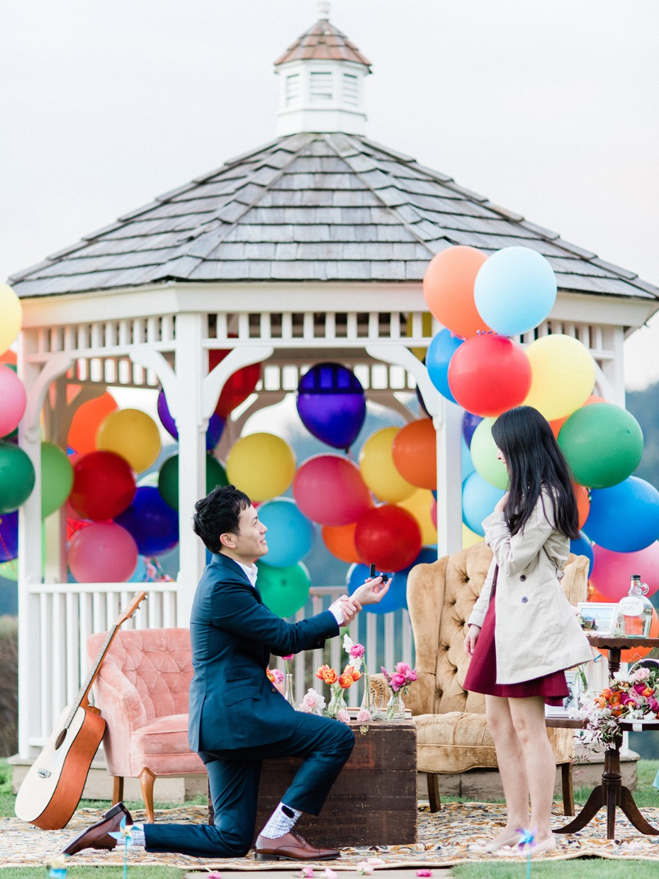 Up themed proposal