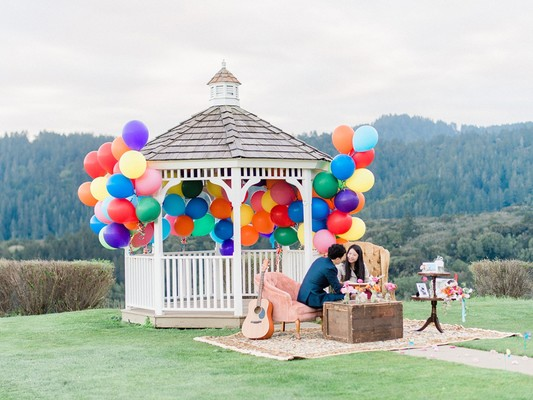 How To Have An Up Themed Surprise Proposal