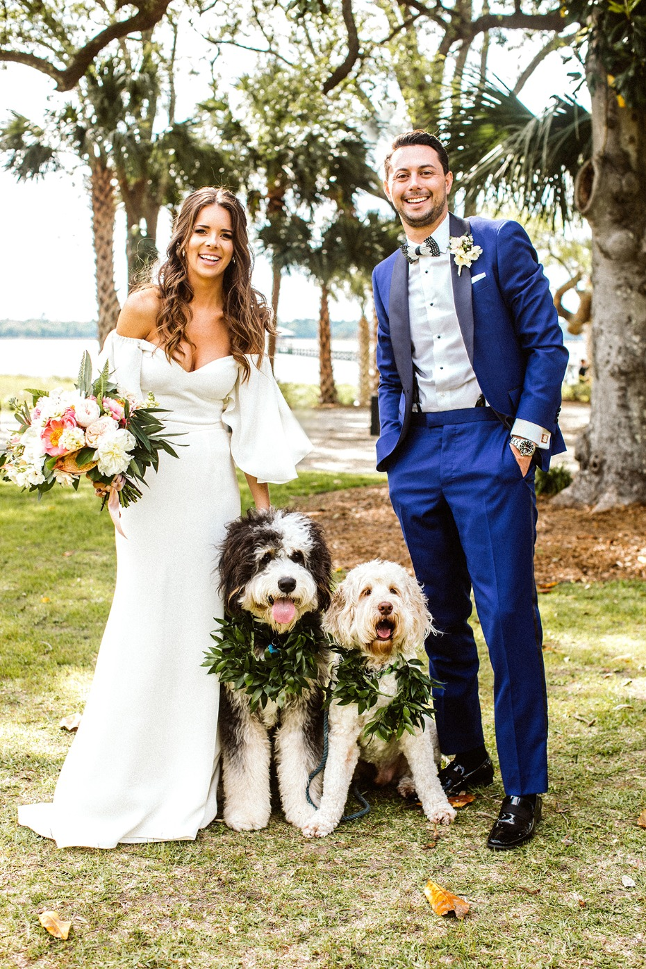wedding dogs and ring bearers