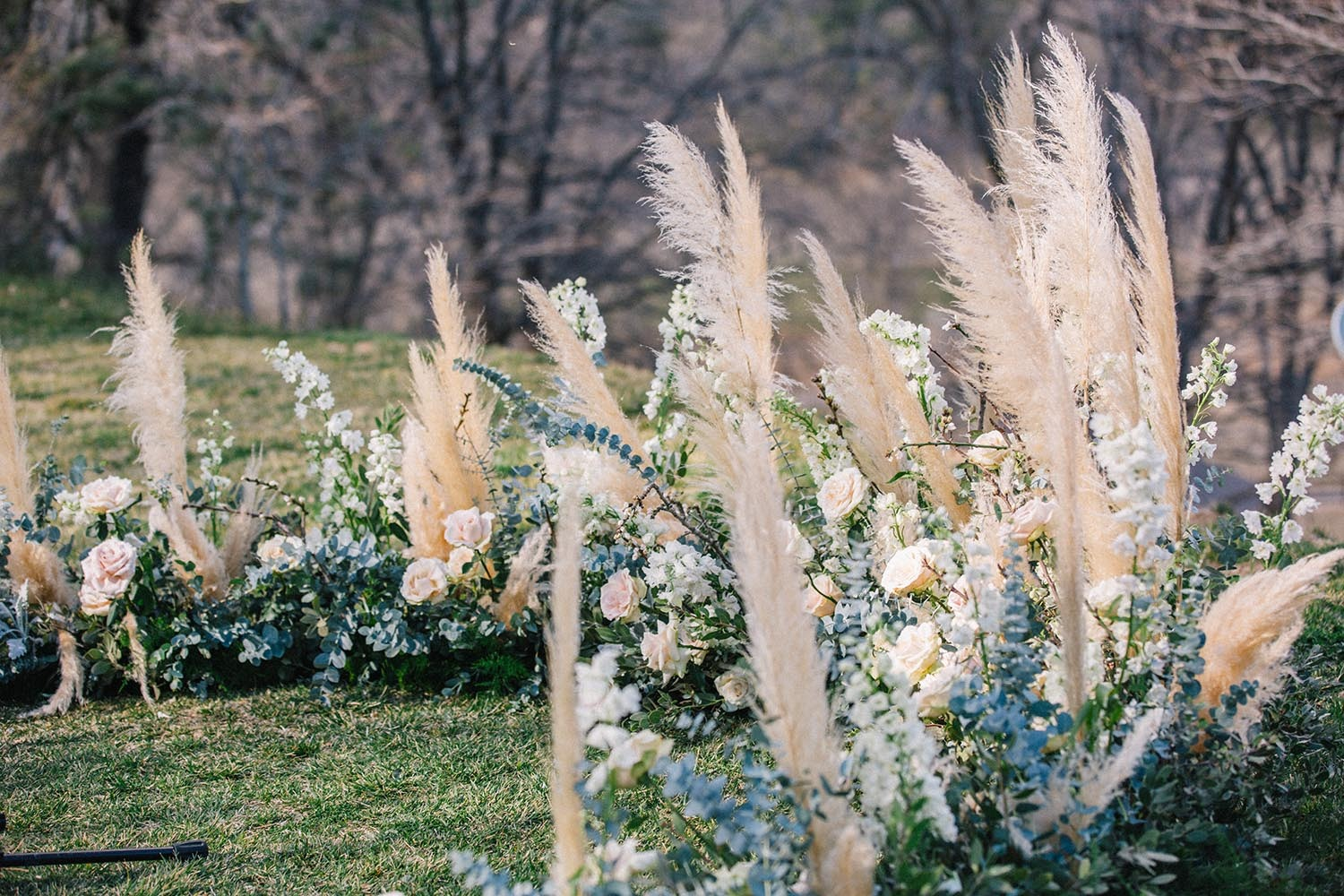 pampas grass and roses wedding backdrop