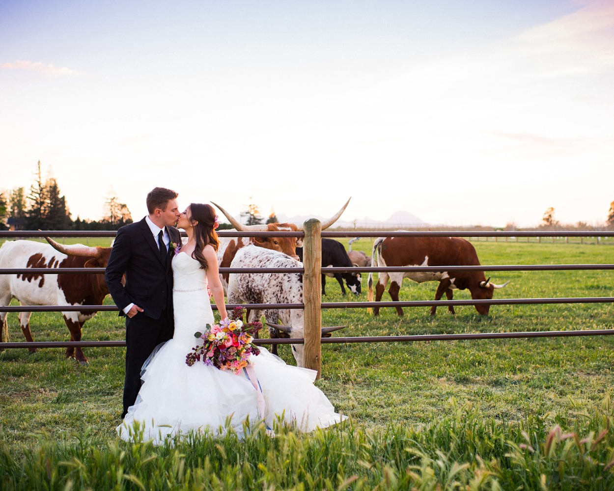 Longhorn ranch wedding photo idea