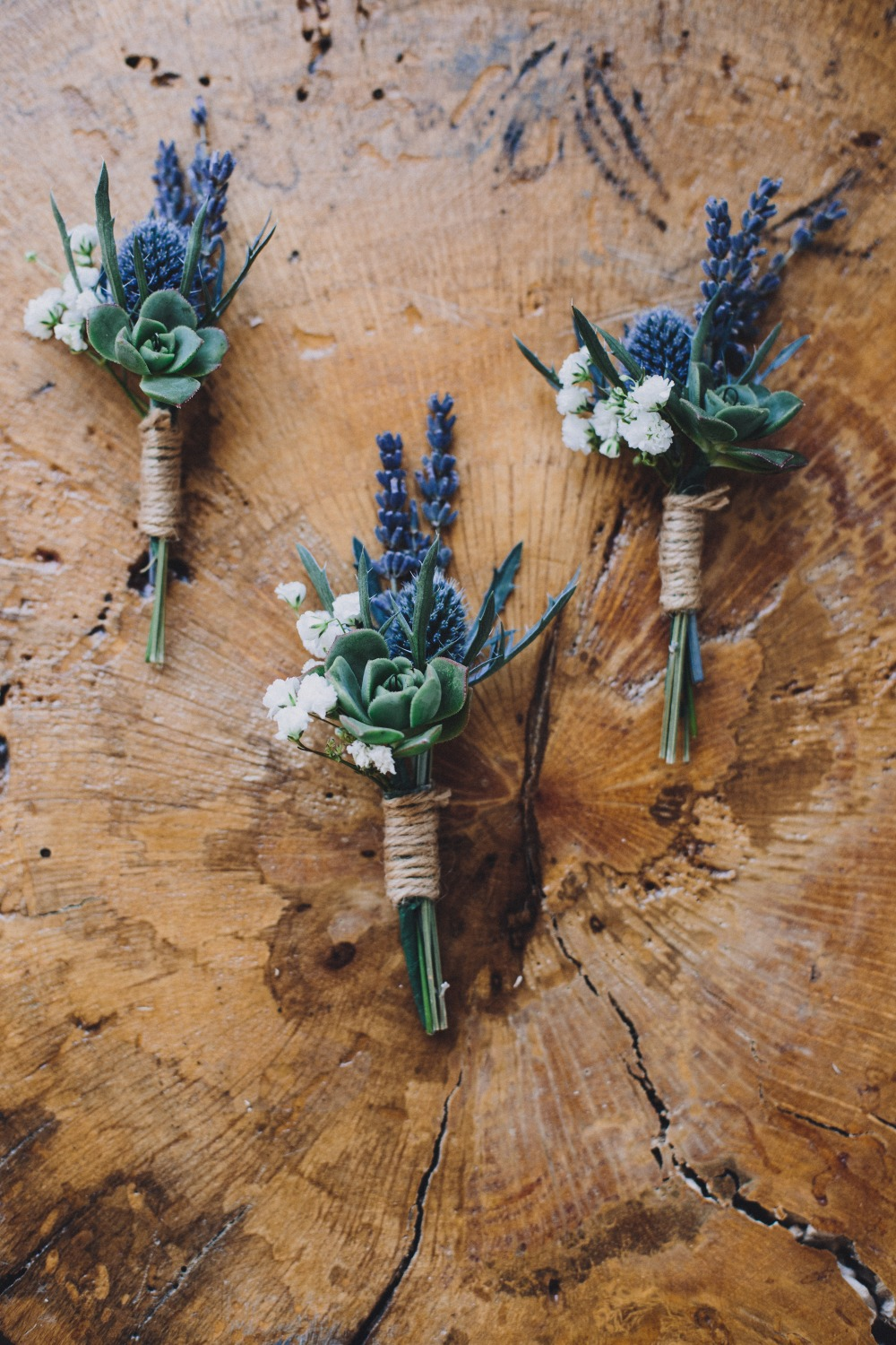 succulent and thistle wedding boutonniere