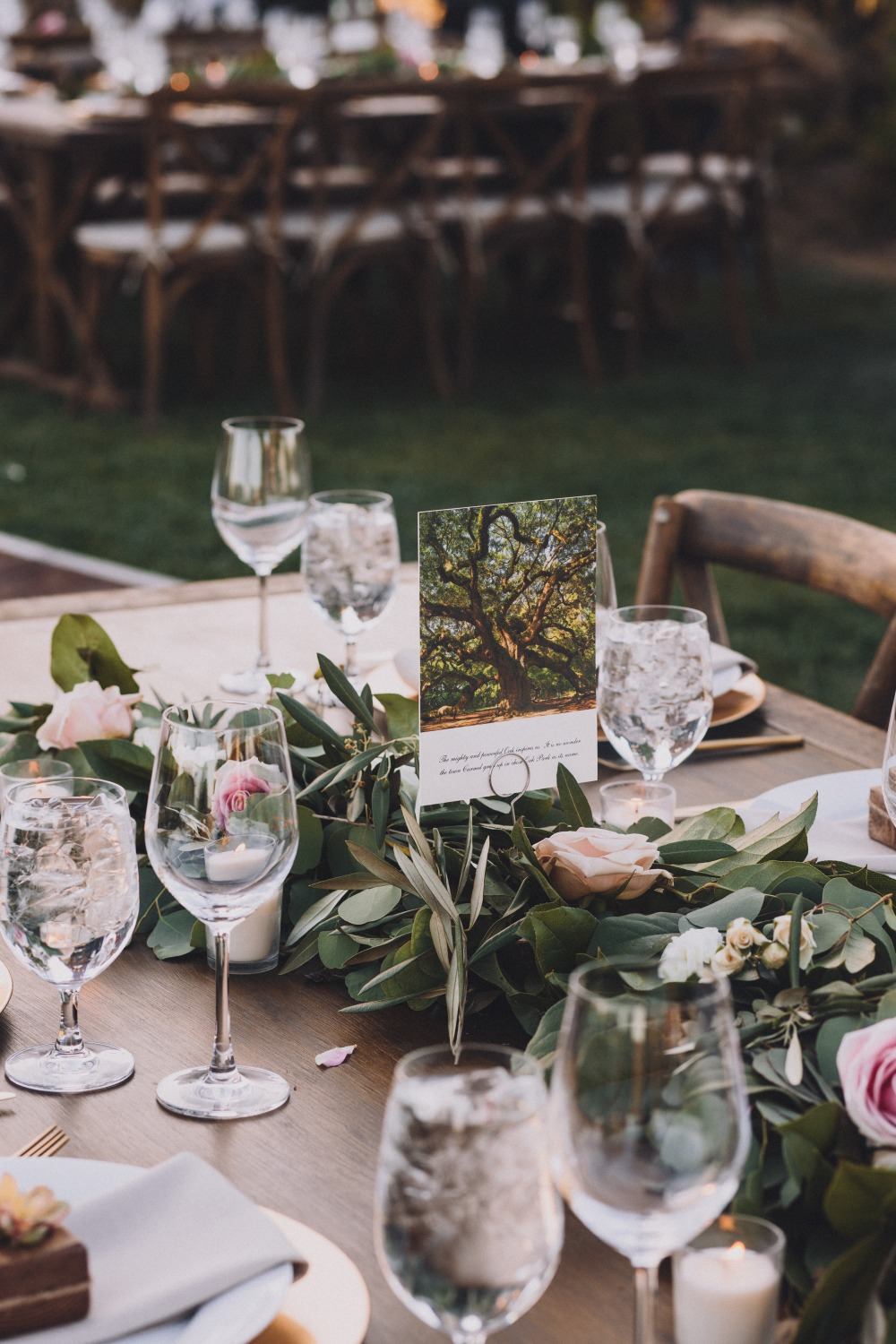 wedding tables named after trees