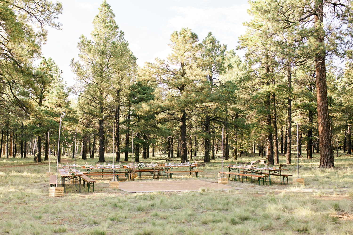 Arizona pines wedding