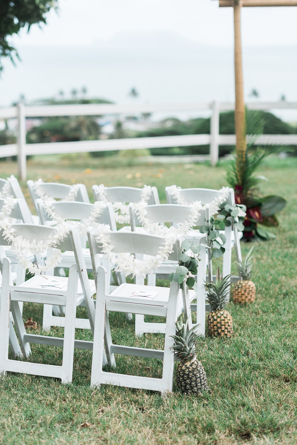 pineapple lined wedding aisle