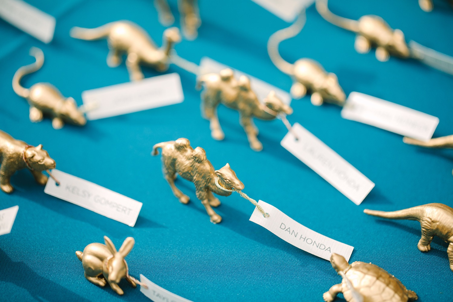 Gold animals place cards