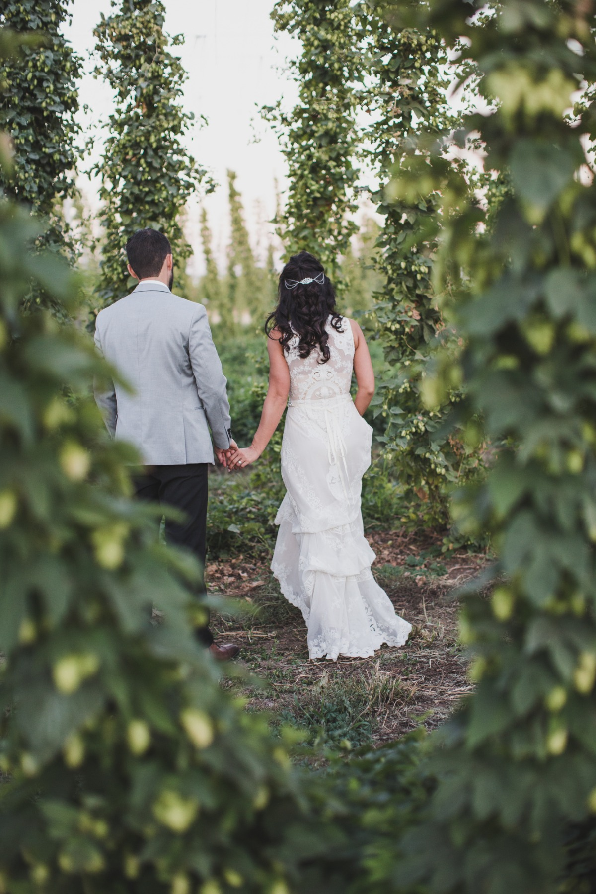 a wedding walk through the hops