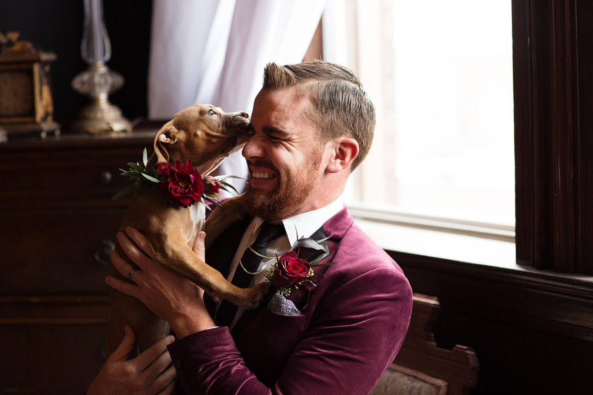 wedding puppy kisses