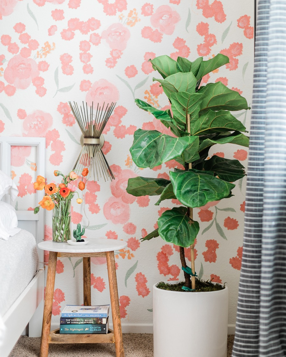 Pantone Living Coral Color of the Year Statement Wall Inspiration