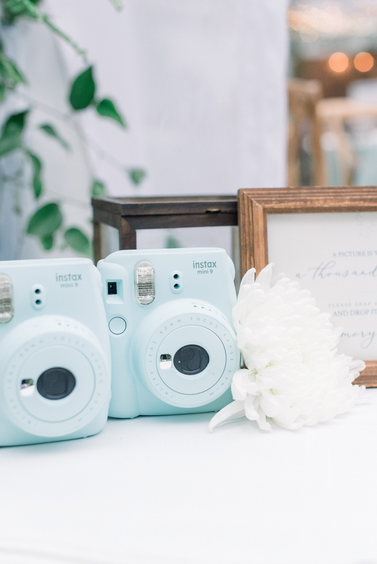 wedding polaroid cameras
