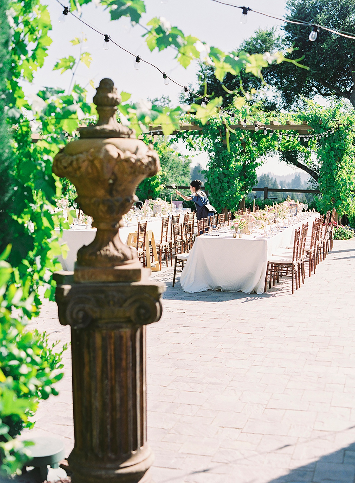 Outdoor vineyard reception