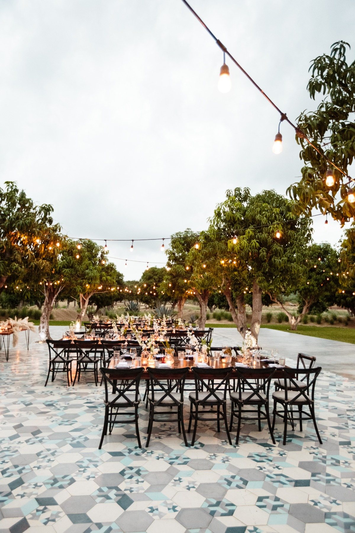 Chic outdoor reception in Cabo San Lucas