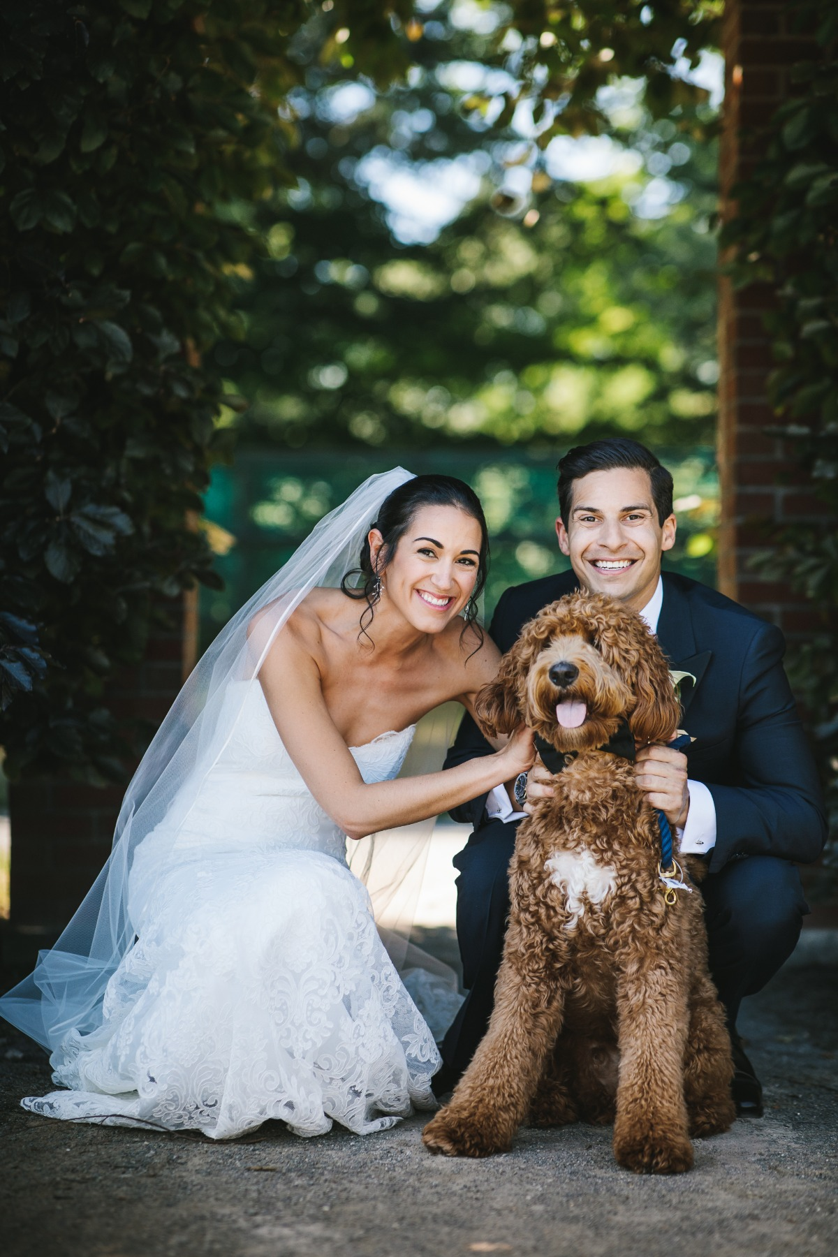 bride groom and wedding dog