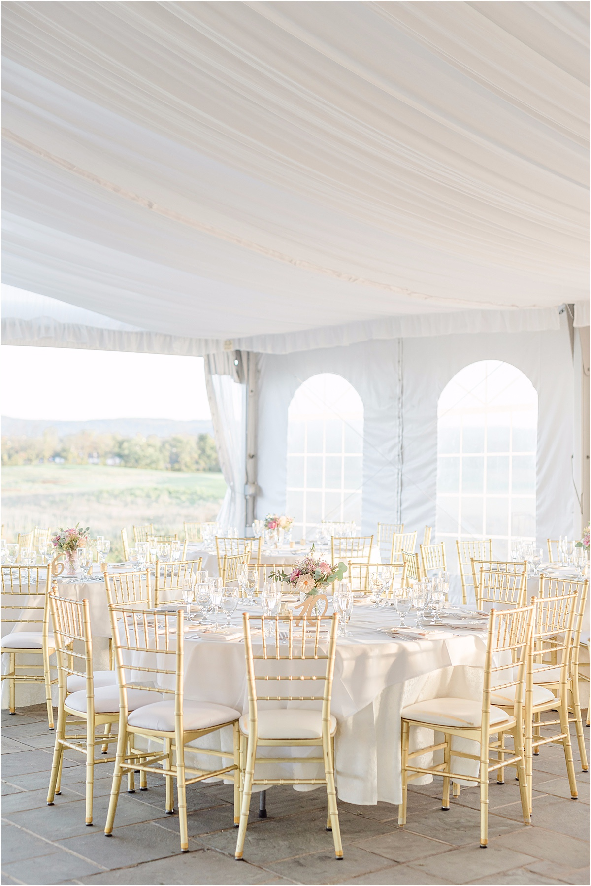 tented wedding reception with gold chairs
