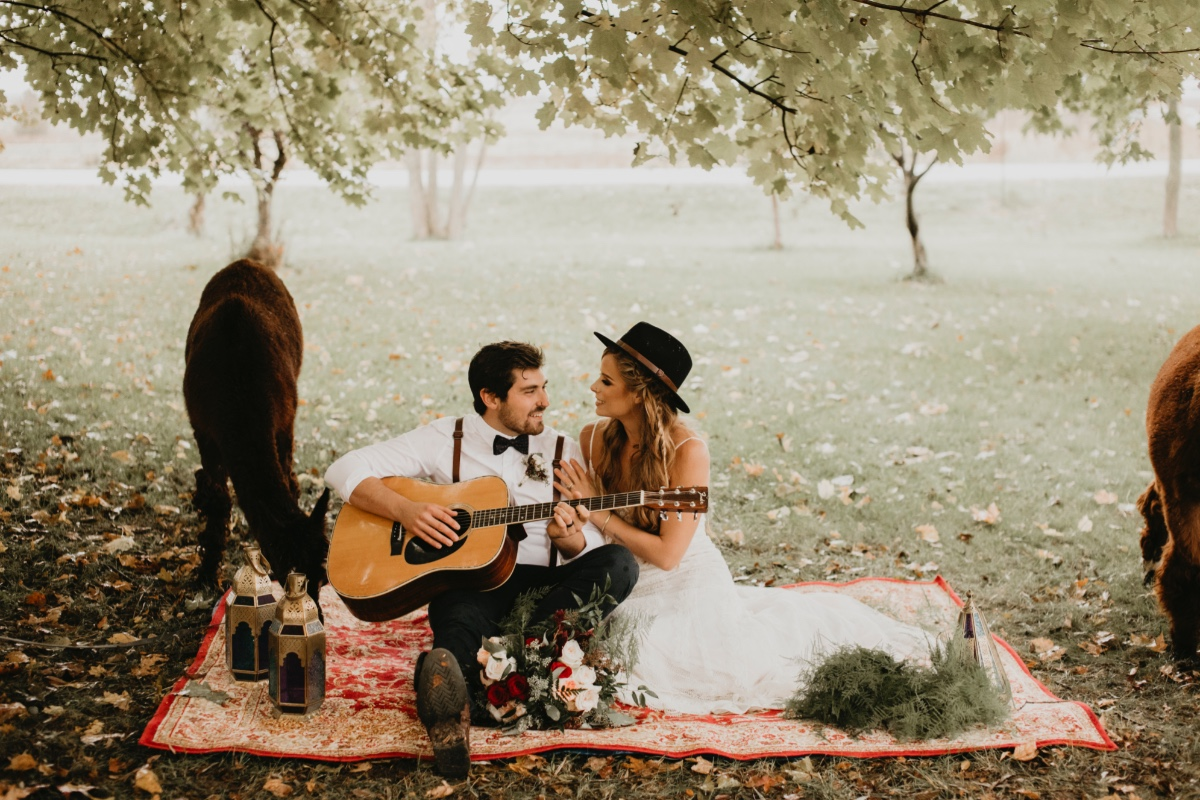Fall boho wedding ideas on an Alpaca farm