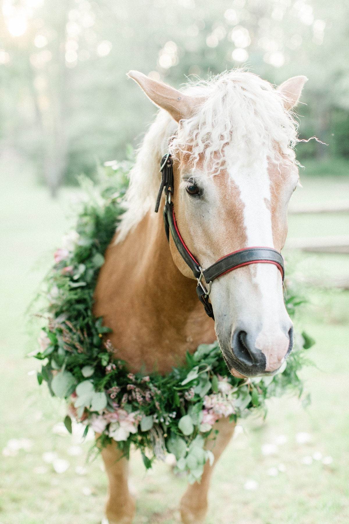 floral wreath for your wedding horse