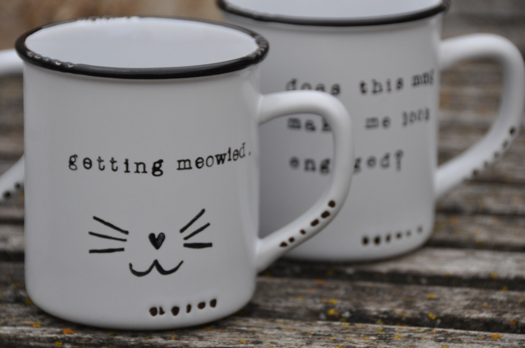 Every engaged cat lady needs a mug to match...right?