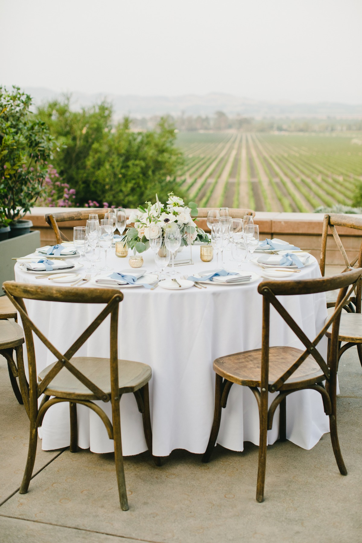Sonoma wedding reception