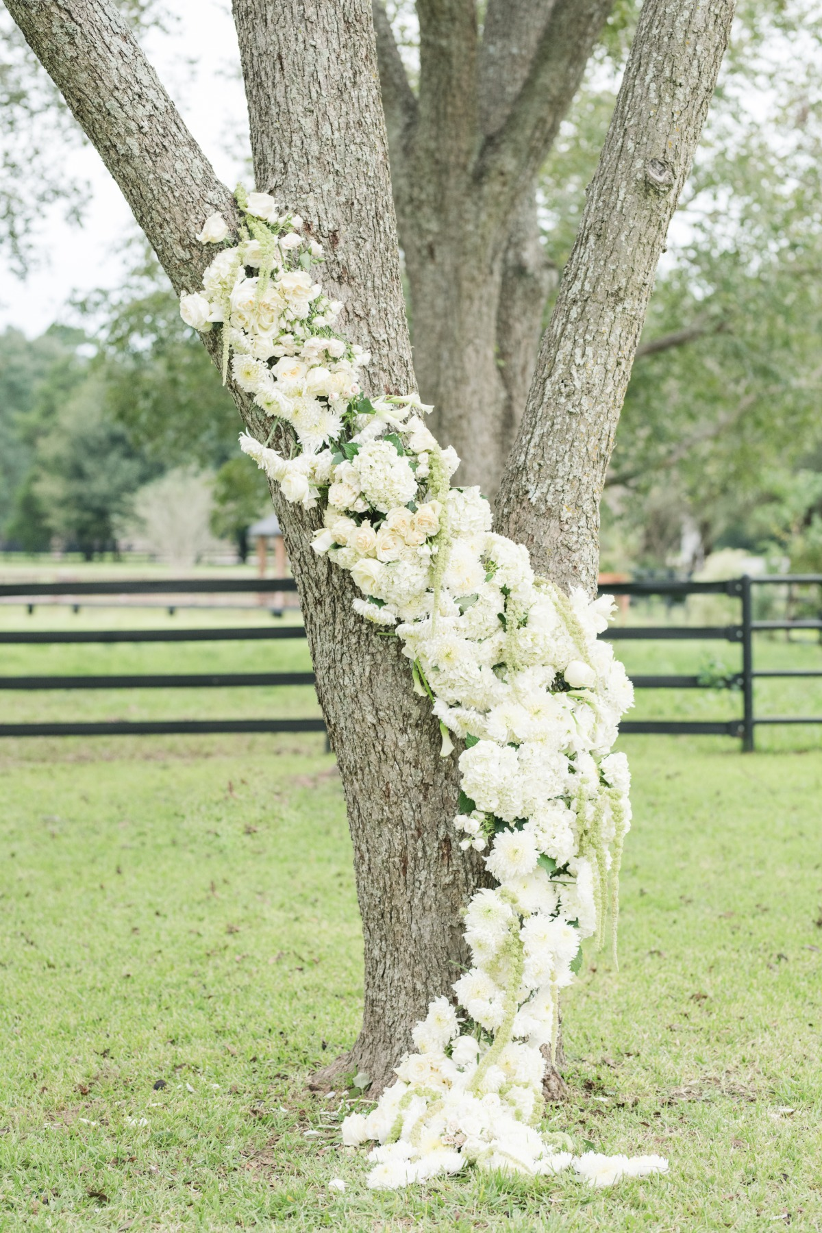 Natural ceremony backdrop