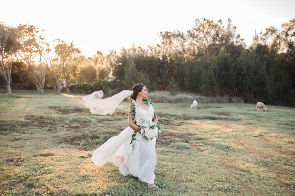 When you are a stunning bride, in a @watters dress, at sunset at @puakearanch , surrounded by sheep, goats, and horses, and the wind