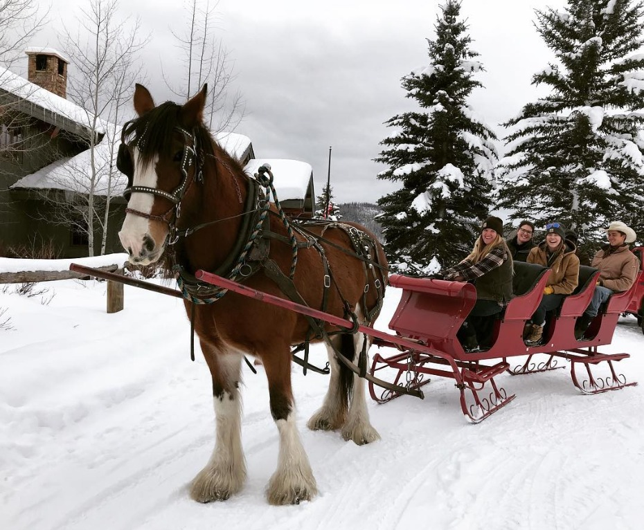 Vista Verde Steamboat Springs Horse Drawn Carriage Ride in Snow