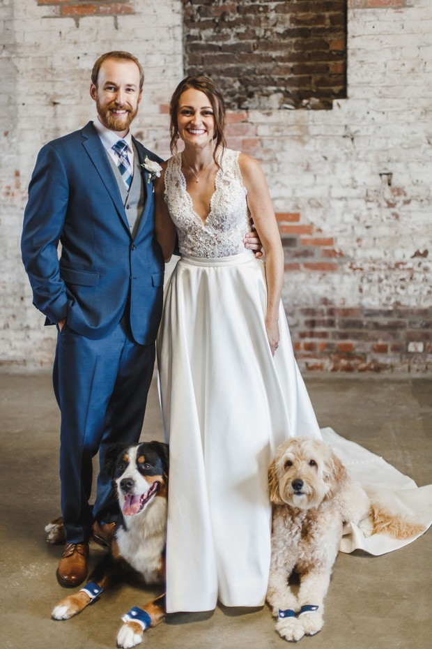 wedding couple and wedding dogs