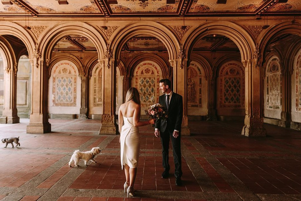 Being photobombed by puppies on the day you elope is always a fun surprise!